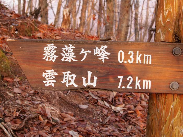 2012年 4月1日 雲取山 15