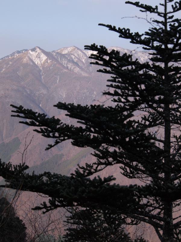 2012年 4月1日 雲取山 22