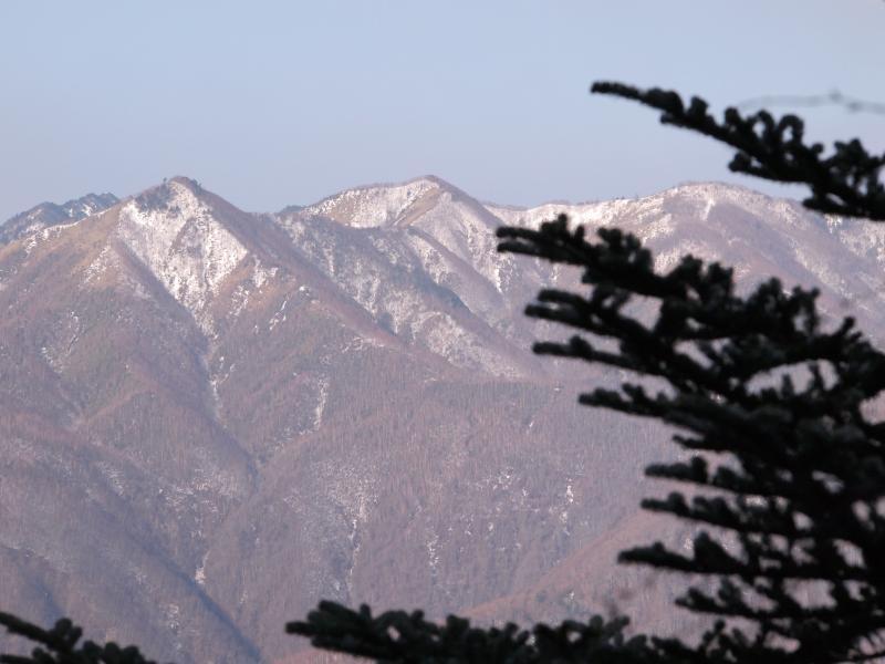 2012年 4月1日 雲取山 23