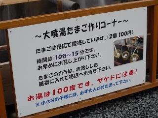 Sp1060941