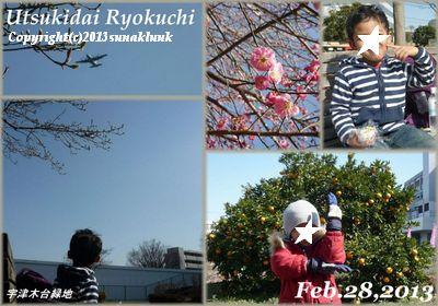 13042303Utsukidairyokuchi1.jpg