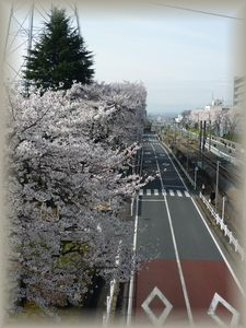 2013_03_28_01.jpg