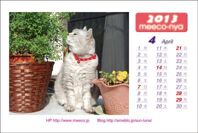 ミーコのカレンダー1304