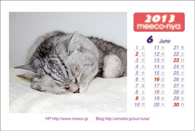 ミーコカレンダー1306