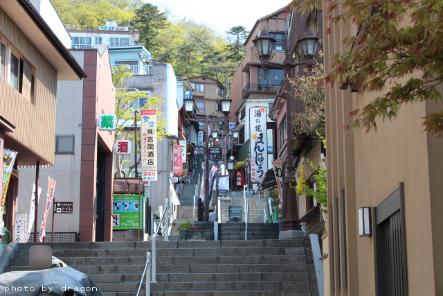 ikahoishidangai-15.jpg