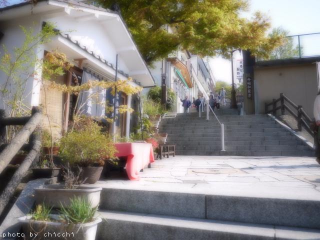 ikahoishidangai-17.jpg