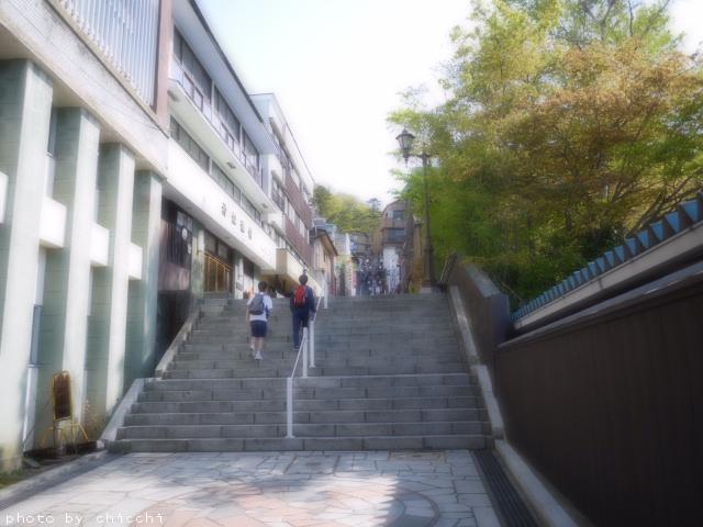 ikahoishidangai-18.jpg