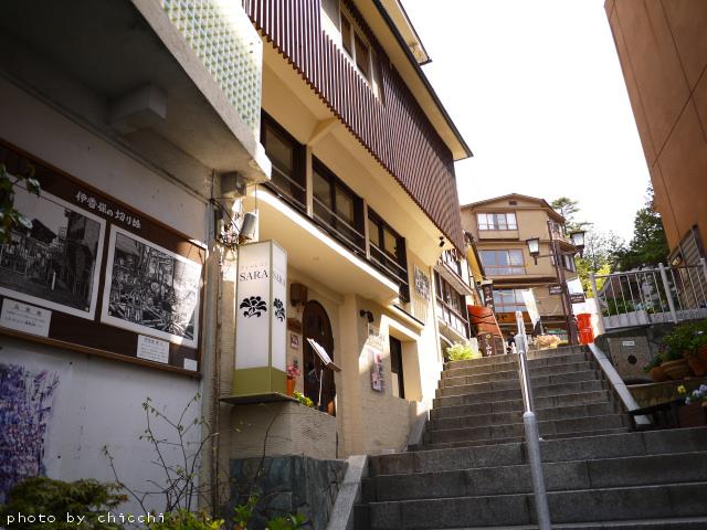 ikahoishidangai-2.jpg