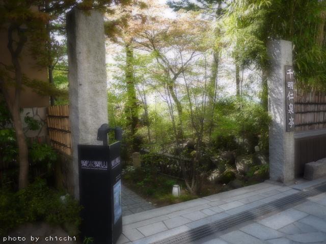 ikahoishidangai-21.jpg