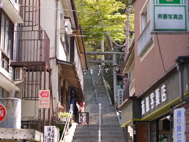 ikahoishidangai-3.jpg