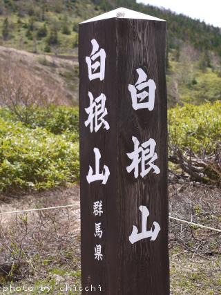 shiranesan-1.jpg