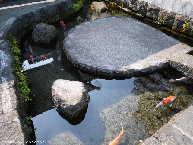 tainooyogumatchi-14.jpg