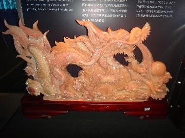 台湾珊瑚2
