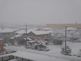 0111雪