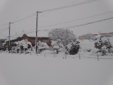 雪0124