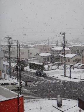 雪0313