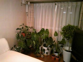 rooms0903-2_20100907121019.jpg
