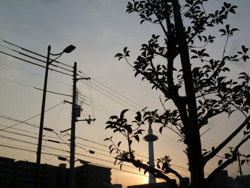 032_20111221223428.jpg