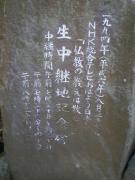 IMGP6377.jpg