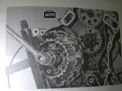 IMGP6609.jpg