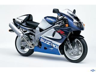 Suzuki-TL1000R_mp51_pic_31379.jpg