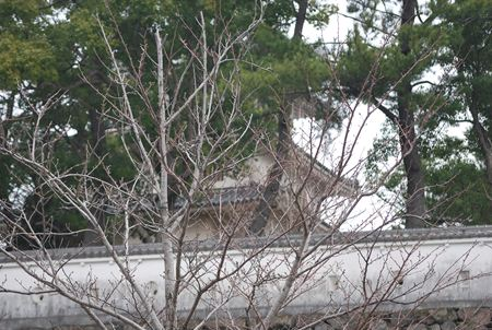 DSC_0720屋根