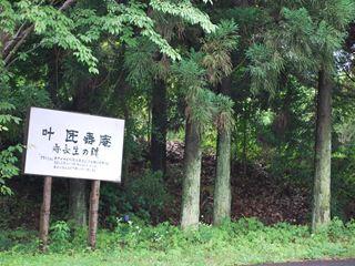 DSC_0912東京