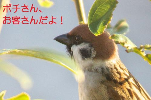 000_20111203215534.jpg