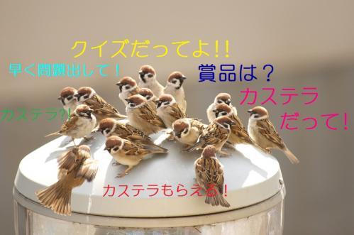 002_20110129213300.jpg