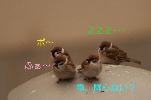 002_20110315205439.jpg