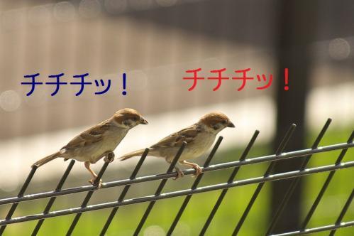 010_20111006190551.jpg