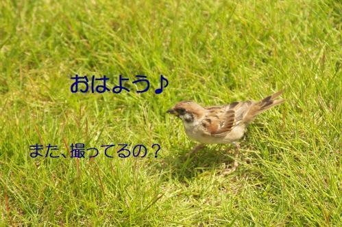 010_20111012232432.jpg