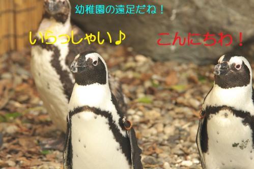 010_20111024220117.jpg