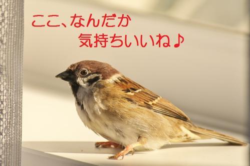 010_20111028231434.jpg