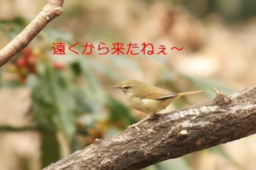 020_20110217201256.jpg