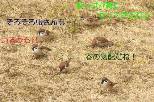 020_20110227234444.jpg