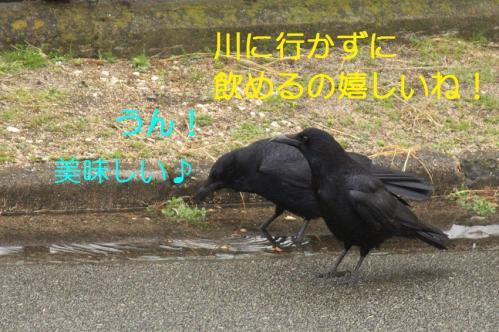 020_20110325004020.jpg