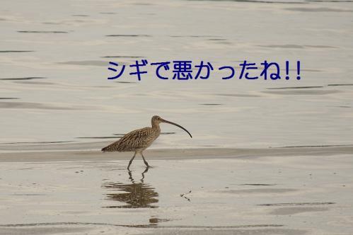 020_20110621204931.jpg
