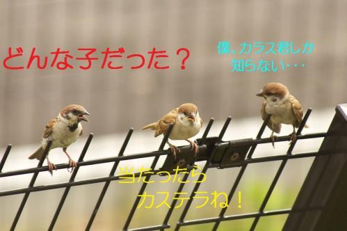 020_20110801222349.jpg