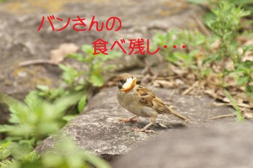 020_20110830214143.jpg