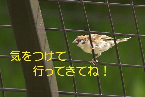 020_20111004221501.jpg