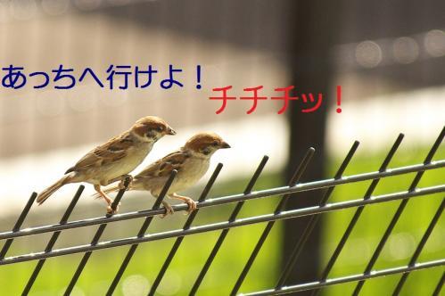 020_20111006190550.jpg