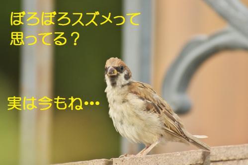 020_20111007221108.jpg