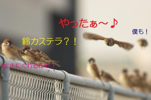 020_20111128224837.jpg