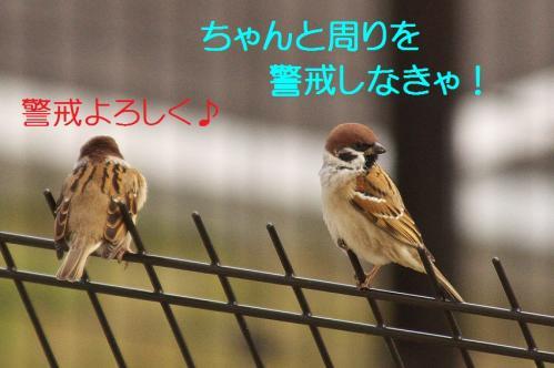 020_20111227205926.jpg