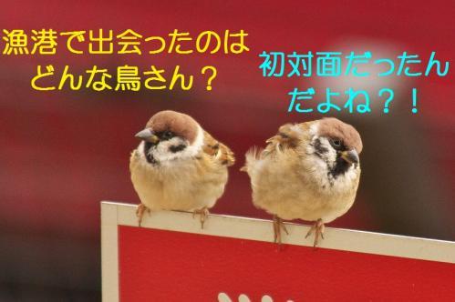 020_20120108212015.jpg