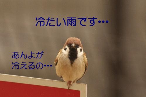020_20120213215733.jpg