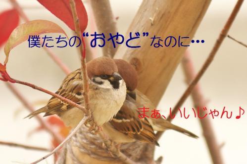 020_20120215214552.jpg