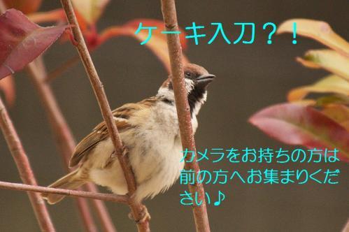 020_20120319224715.jpg