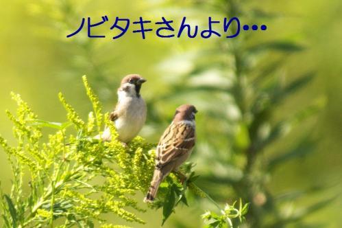 02_20101013231635.jpg